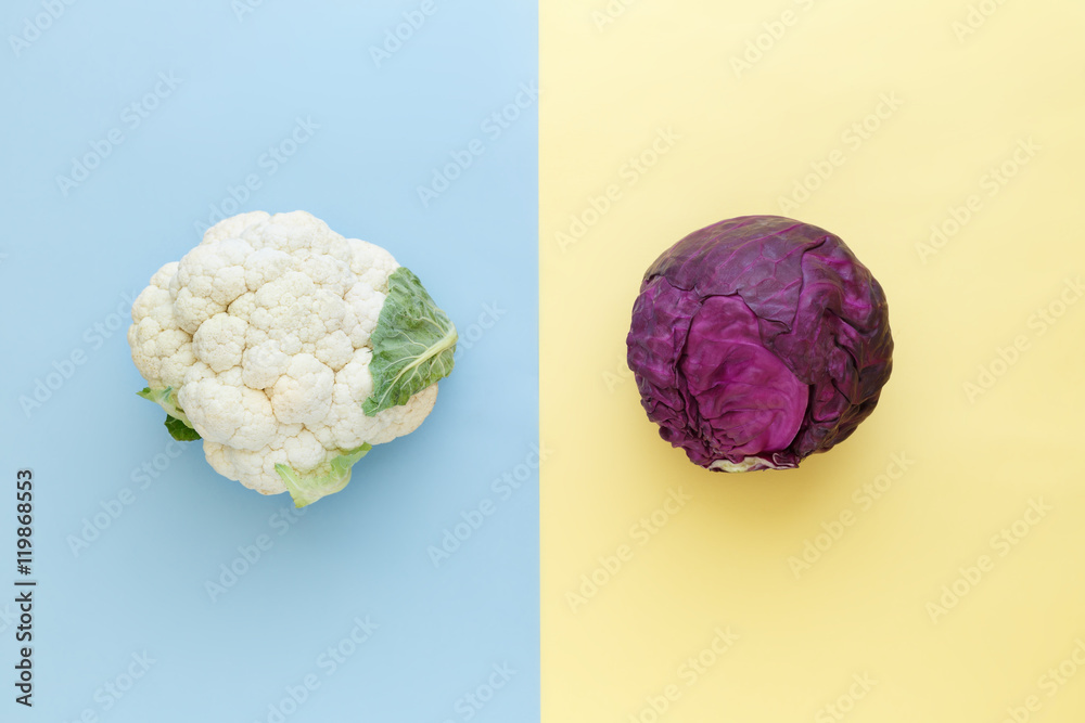Fototapeta Cauliflower and red cabbage on