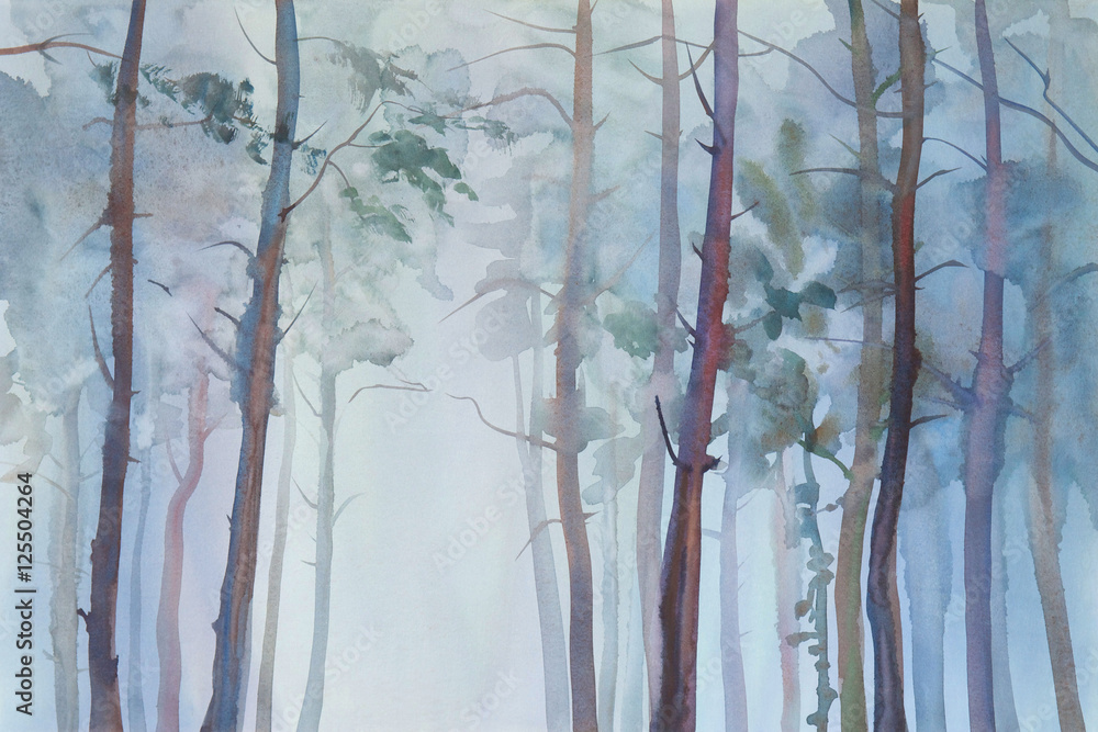 Fototapeta Foggy forest watercolor