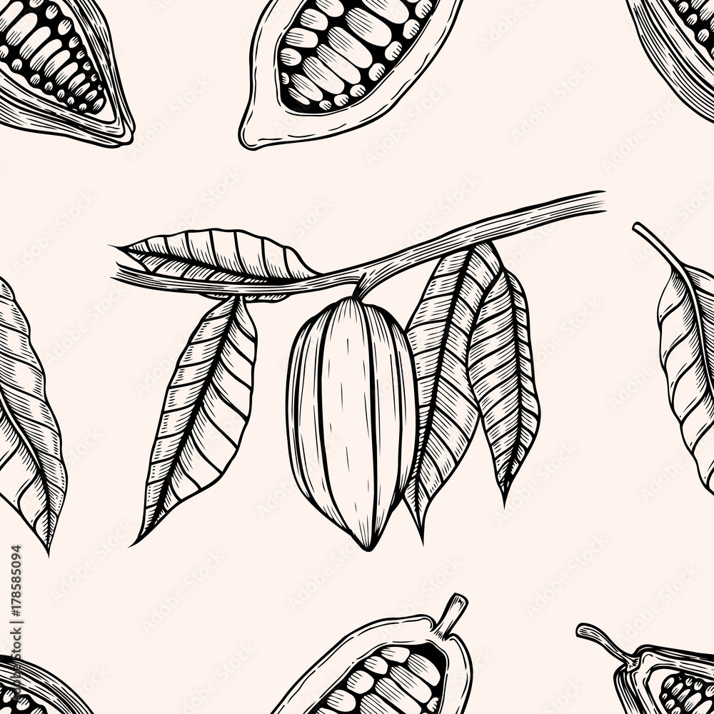 Tapeta Seamless pattern of cocoa
