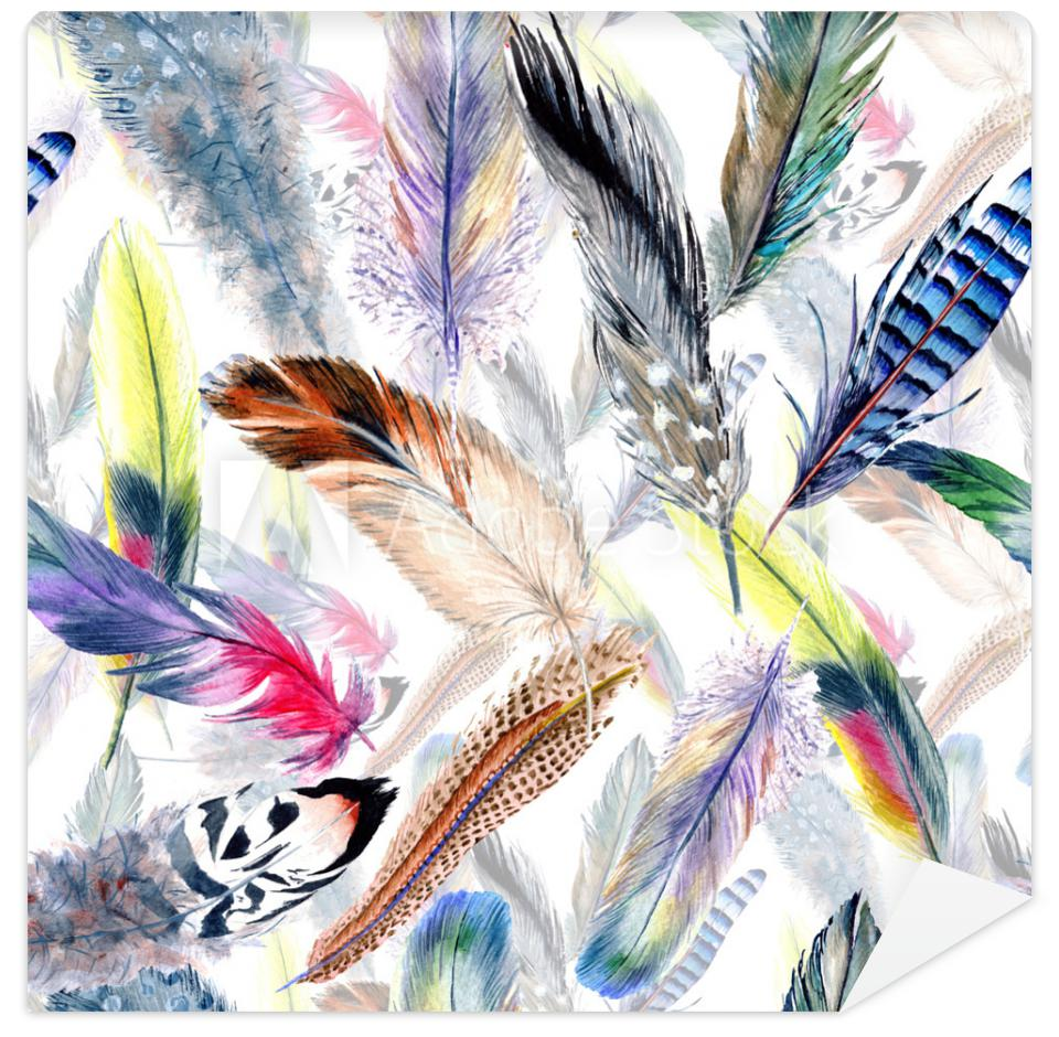 Tapeta Watercolor bird feather