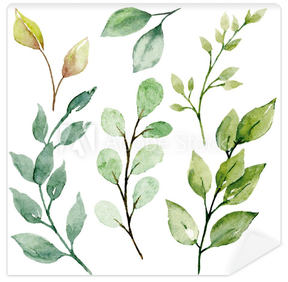 Tapeta Leaves watercolor set. Hand